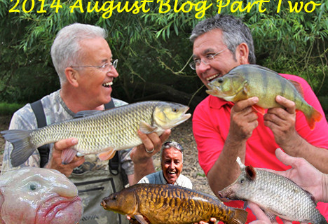 2014 August Blog – Part Two