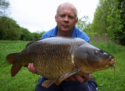 Allan Common Carp
