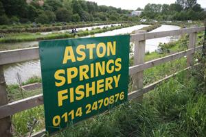 Aston Springs 300