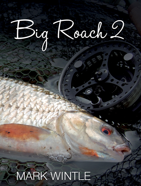 Big Roach 2 Cover