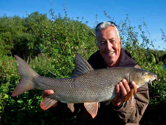 Big Tailed Barbel
