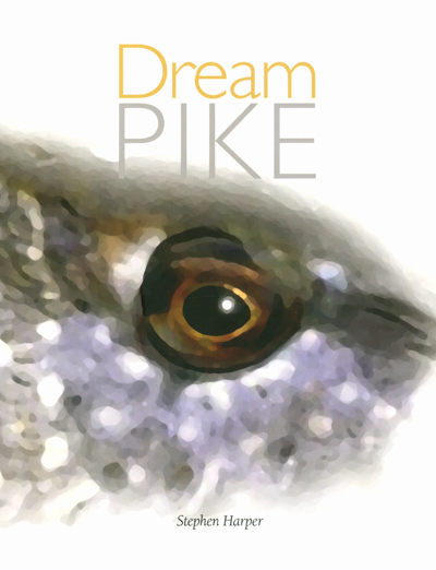 DREAM PIKE Cover 400