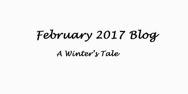Feb 2017 Blog