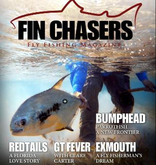 Finchasers