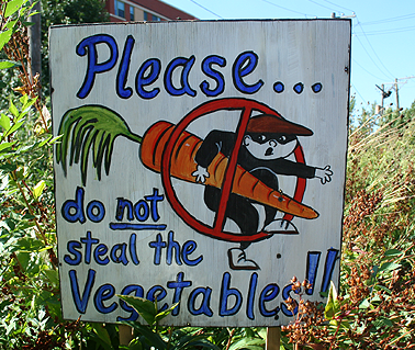 please-do-not-steal-the-vegetables
