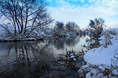 Snowy Dearne