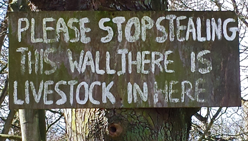 Stealing Sign