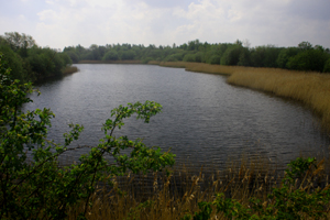 The back lake is largely ignored