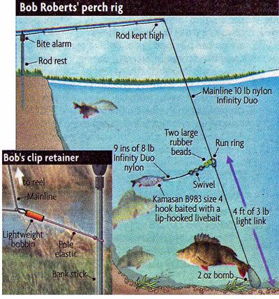 Big river perch fishing bob roberts fishing for Yellow perch fishing rigs